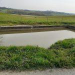 A la fontaine de Perras,l'eau n'est plus assez claire hélas. Donc, je ne m'y suis pas baigné.
