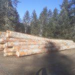 J'ai mis un peu d'ordre en rangeant les billes de bois!
